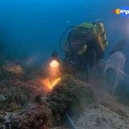 Тихоокеанские глубины